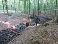 Kinder erkunden die Umgebung im Wald.