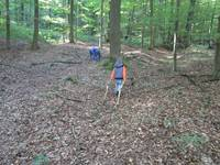 Kinder holen sich Holz für Ihre Hütten.